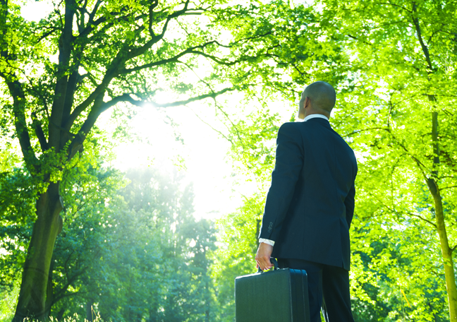 businessman-in-suit-suitcase-standing-in-middle-of-forest-woods-trees