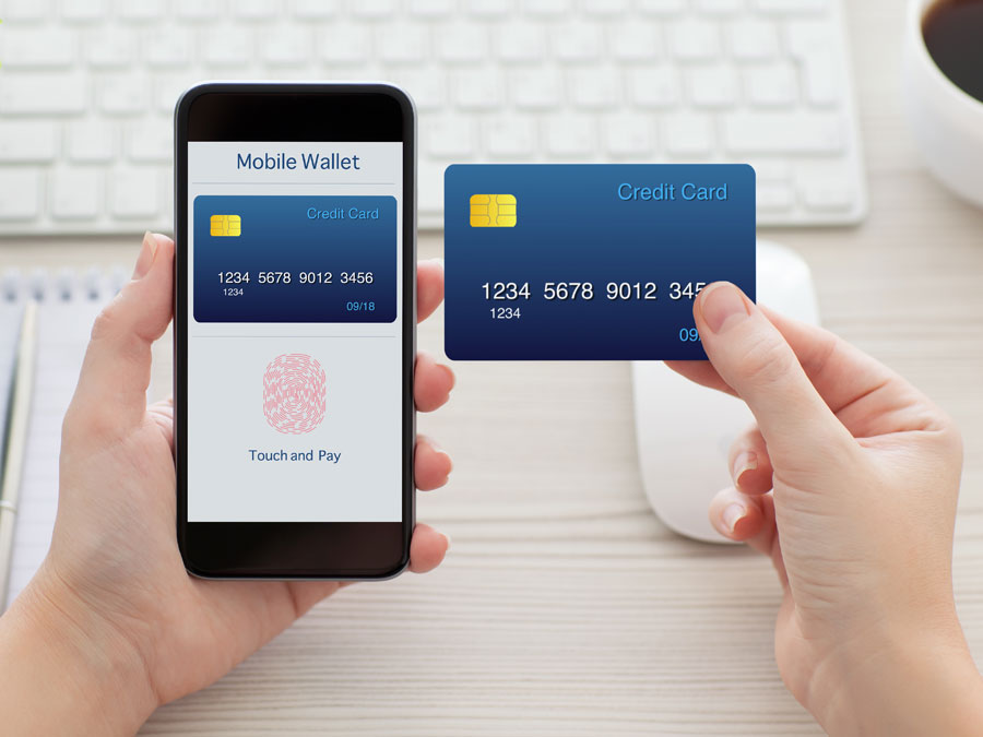 hand holding phone credit card showing ecommerce