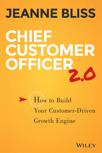 Chief Customer Officer 2 book cover